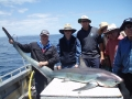 kangaroo-island-fishing-adventures-great-catches-26