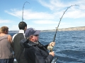 kangaroo-island-fishing-adventures-great-catches-3