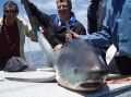 kangaroo-island-fishing-adventures-great-catches-4