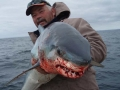 kangaroo-island-fishing-adventures-great-catches-40