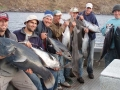 kangaroo-island-fishing-adventures-great-catches-43